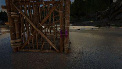 Wooden Cage PaintRegion4.jpg