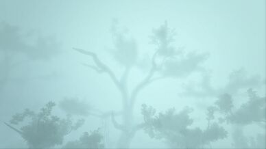 Canopy (Genesis Part 1).jpg