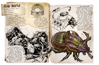 Dossier Dung Beetle.png