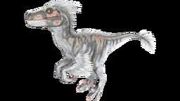 X-Raptor PaintRegion4.png