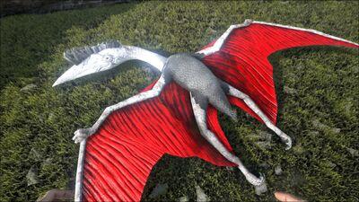 Quetzal PaintRegion0.jpg