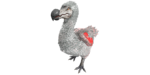Dodo PaintRegion5.png