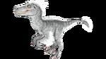 Raptor PaintRegion4.png