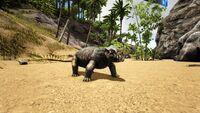 Lystrosaurus on the Beach.jpg