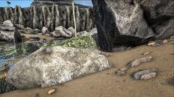 Metal poor rocks.jpg