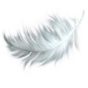 Feathers (Primitive Plus).png