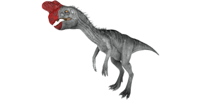 Oviraptor PaintRegion1.png