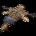 Dodo Rug (Mobile).png