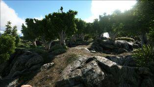The Farm (Valguero).jpg