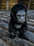 Chibi-Gigantopithecus in game.jpg
