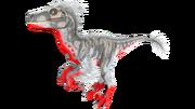 X-Raptor PaintRegion3.png