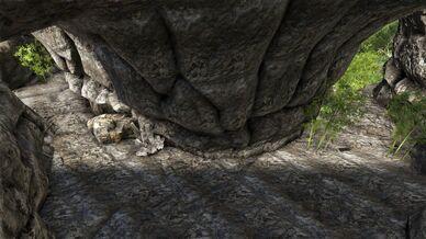 Oluf Jungle Cave (Ragnarok).jpg