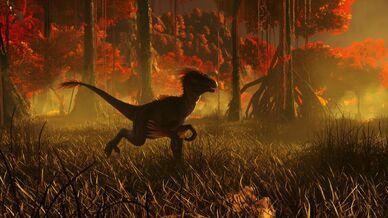 Fire Swamp (Crystal Isles).jpg