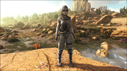 A full set of Desert Armor on the female character.