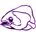 Abberant Coelacanth.png