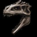 Giganotosaurus Bone Costume.png