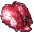 Yutyrannus Lungs.png