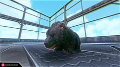 Chibi-Direbear in game 1.jpg