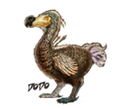 Dossier Dodo Character.png