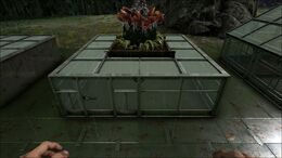 Greenhouse PartiallyCovered.jpg