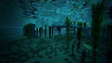 Ocean Under Center (The Center).jpg