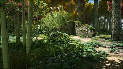 Ruins Jungle.jpg