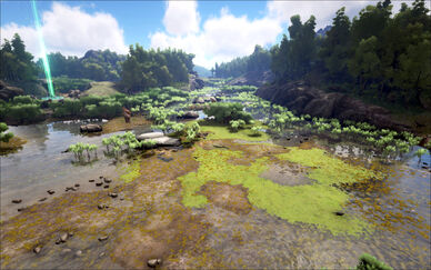 Writhing Swamps.jpg