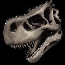 Rex Bone Costume.png