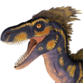 X-Raptor Test.png