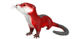 Otter PaintRegion0.png