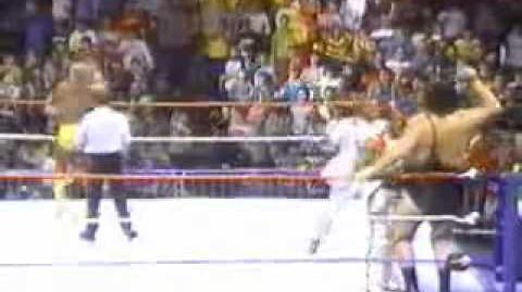 Hulk Hogan vs Andre the Giant - The Main Event 1988