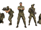 Livonian Defense Force