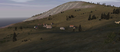 OFP-terrain-nogova-05