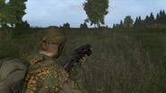 Arma2-bizon-04