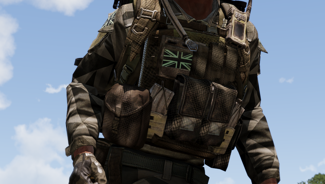 CTRG Plate Carrier Rig Mk.2