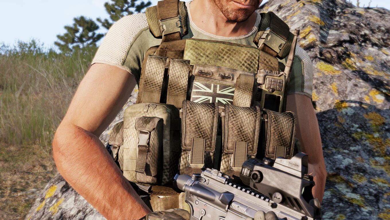 CTRG Plate Carrier Rig Mk.1