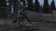 Arma2-bizon-02