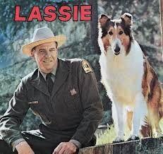 Lassie-1964-1970-1a1.jpg
