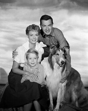 Lassie-timmy-1a1.jpg