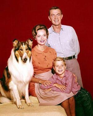 Lassie-1957-1964-1a6.jpg