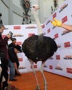 2013 Netflix S4 Premiere - Cindy the Ostrich 03