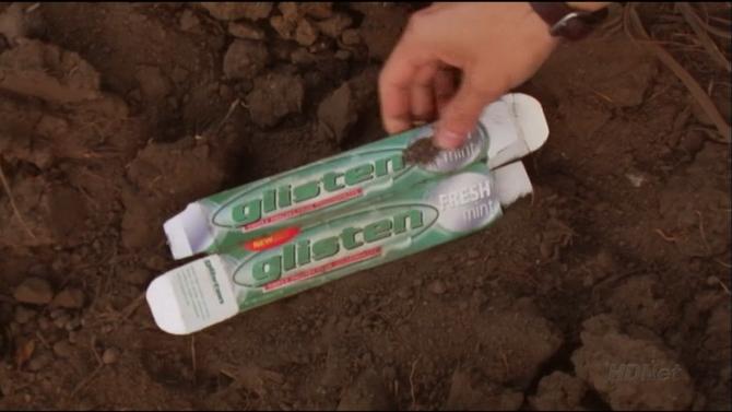 Glisten toothpaste