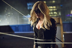Arrow-saison-2-episode-4-crucible-black-canary.jpg