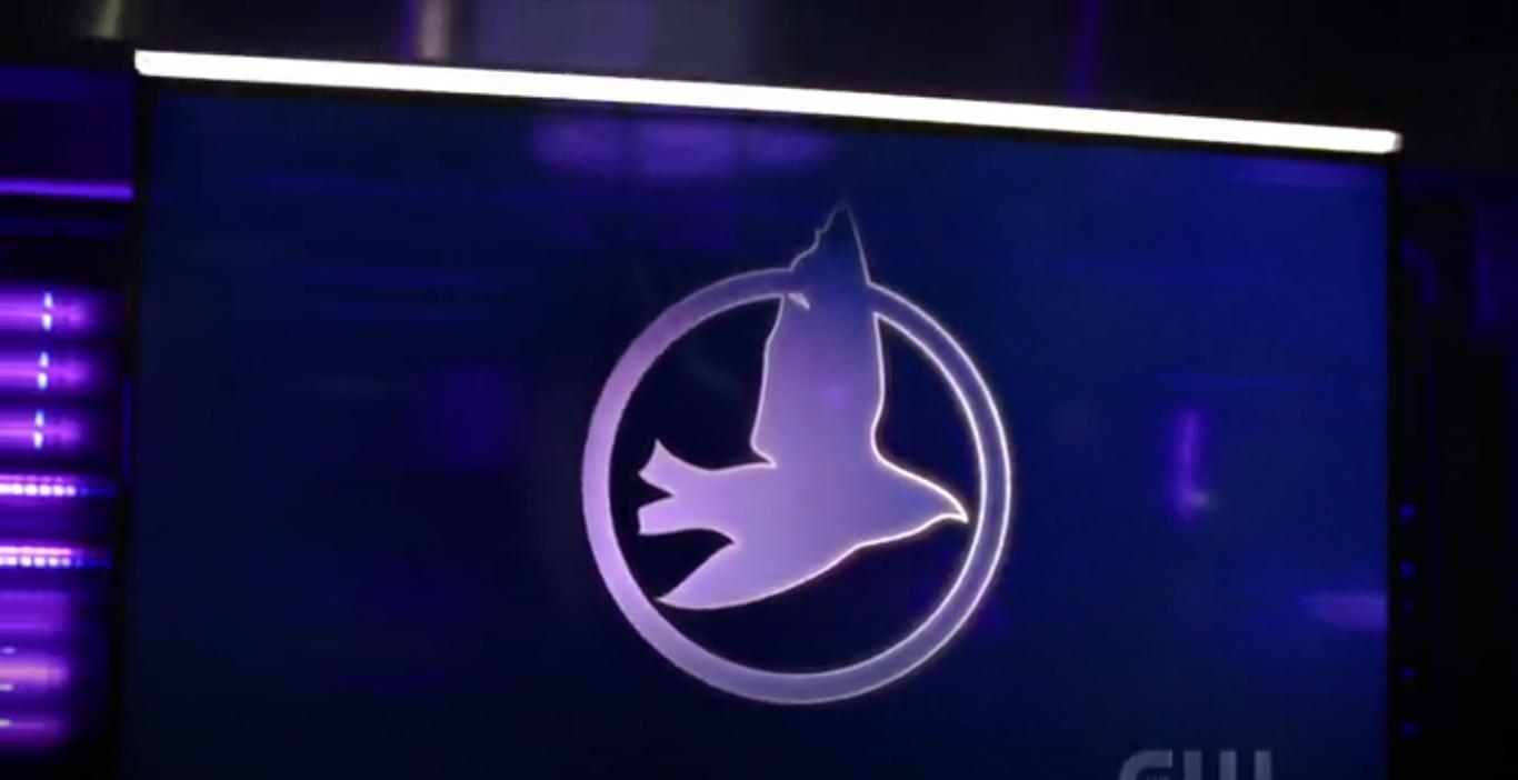 Team Black Canary (Terre 2)