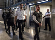 17.Arrow-Crossing Lines-Oliver