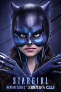 Stargirl Season 1 Poster Wildcat II