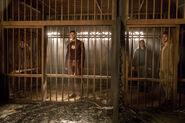 8.The Flash-Attack on Gorilla City-Caitlin, Barry, Cisco et Julian