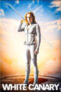 Poster 000.00 White Canary