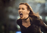 8.Flash Invincible Black Siren