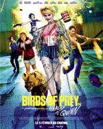 Birds-of-prey-affiche-finale-france.jpg